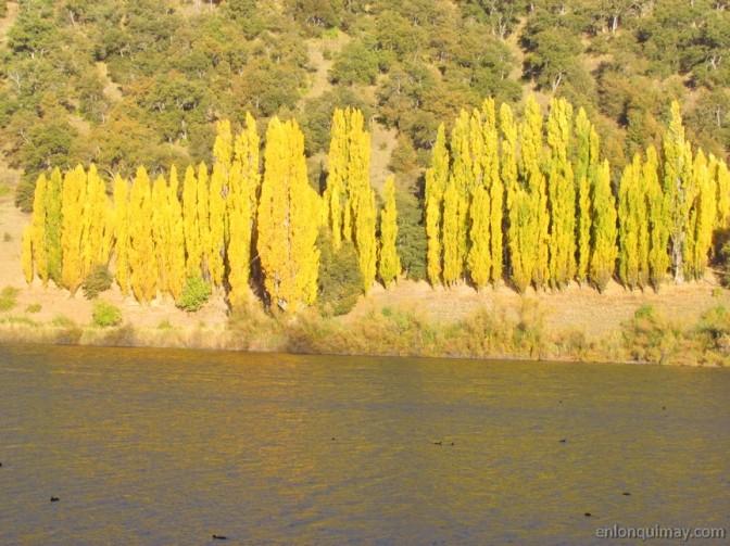 otoño1200001