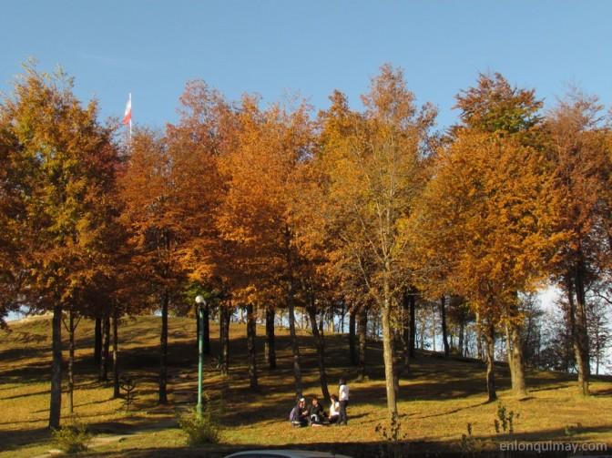 otoño1200008