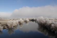 Río Lonquimay