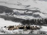 Como testigo de la aventura el río Lonquimay serpenteando el valle cubierto de nieve.