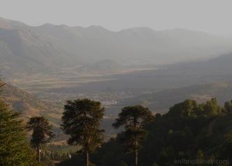 Vista de Lonquimay desde Naranjo Alto