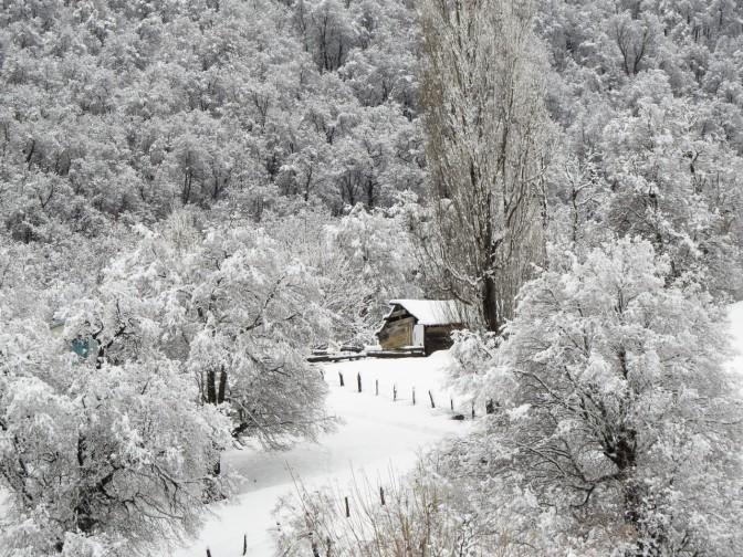 Catálogo del concurso de fotografía Invierno en Lonquimay 2014