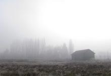 Niebla matutina sitio ex-aduana