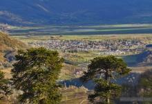 Vista de Lonquimay