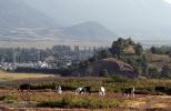 Vista de Lonquimay desde el Naranjo