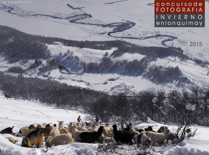 Concurso de Fotografía Invierno en Lonquimay 2015