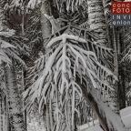 Imágenes seleccionadas concurso de Fotografía Invierno en Lonquimay 2015