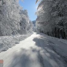 Camino hacia Corralco en una mañana nevada