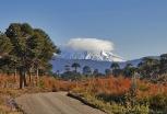 Vista al Vn Lonquimay desde camino a Quinquén