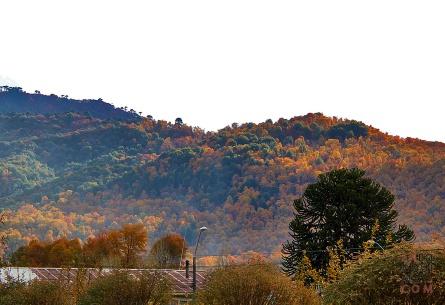 Cerros en otoño vistos desde el pueblo