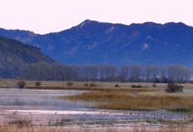 Laguna Jara