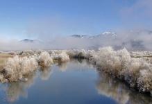 Río Lonquimay en Invierno